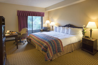Chateau Resort Room